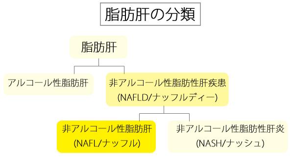脂肪肝の分類図