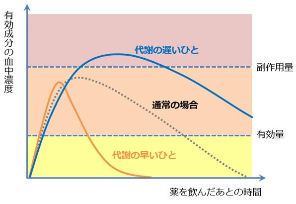 薬の服用後の経過時間と有効成分の血中濃度をあらわしたグラフ2