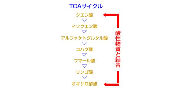 TCAサイクル略図